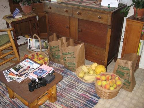 2010 peach harvest