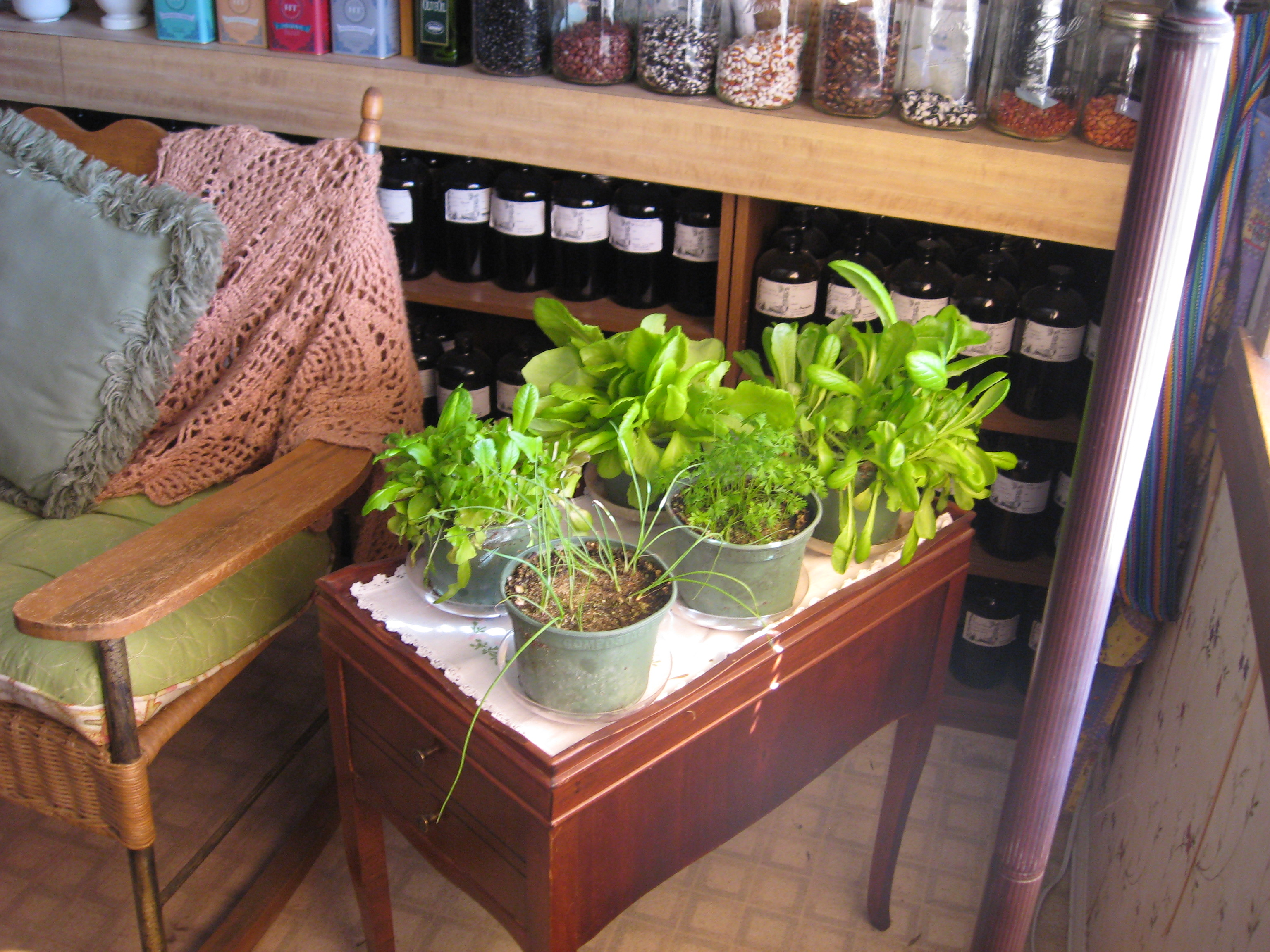 Gardening Info Desert Canyon Farm Green Thoughts Blog