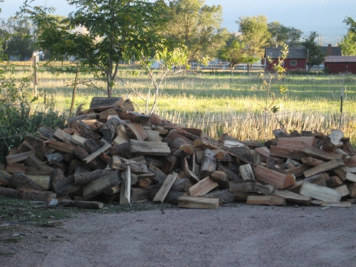 firewood for 2013-2014 winter