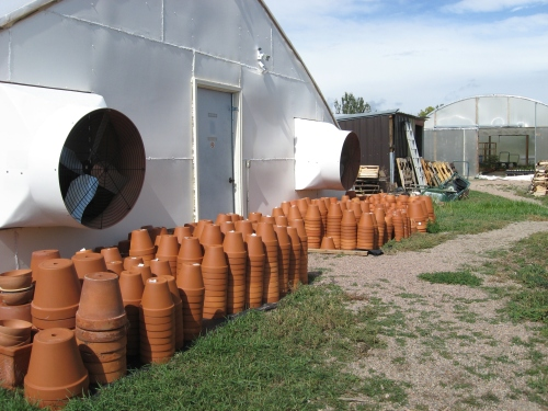 clay pot delivery oct 2011