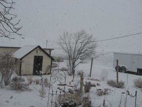 snowstorm 2-24-13