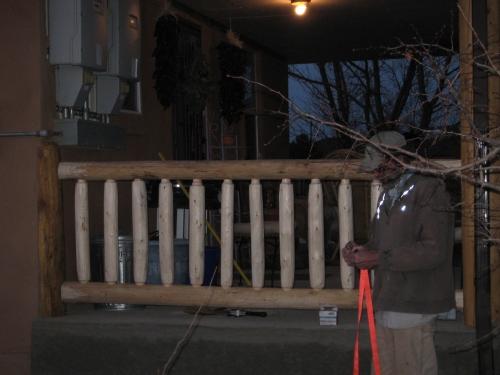 log railing 023