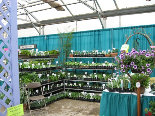 spencers garden show 10