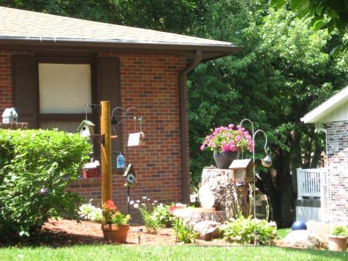 Jodi's birdhouse garden #2