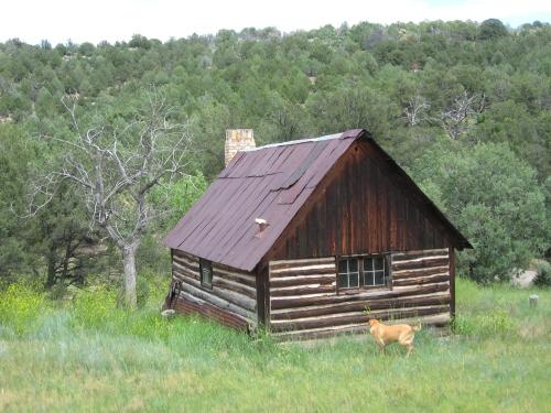 cowboy cabin july 2015 009