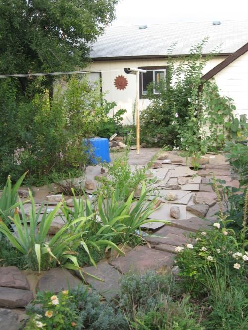 garden mulch 002