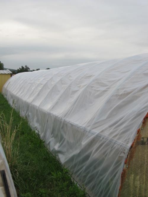 garden mulch 005