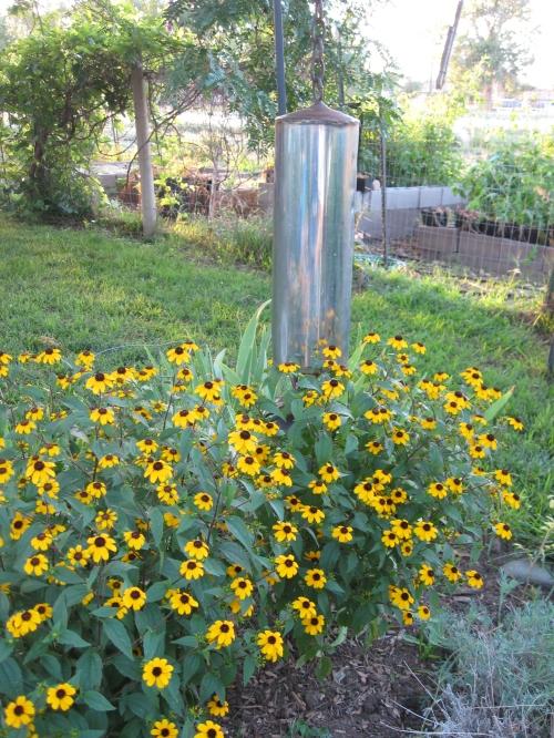 garden mulch 012